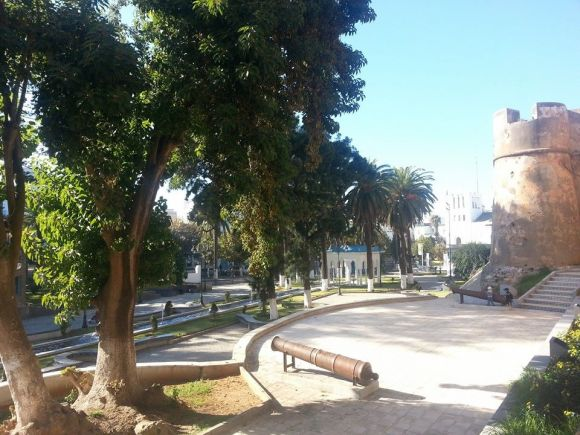 LARACHE - Jardín de las Hespérides - año 2013