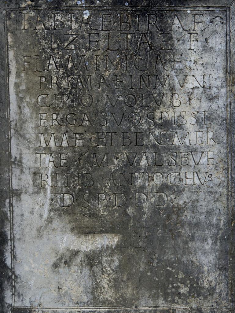 volubilis - inscripción dedicado a la falmínica fabia bira