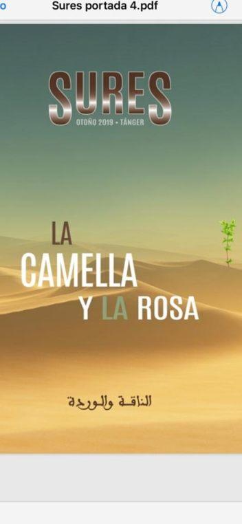 LACAMELLA Y LA ROSA
